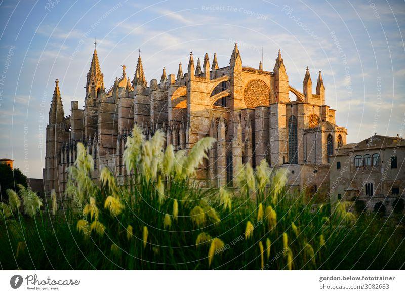 Kirchentraum Himmel Sommer Pflanze blau grün weiß Landschaft schwarz Architektur gelb Glück Kunst Stein braun Zufriedenheit träumen