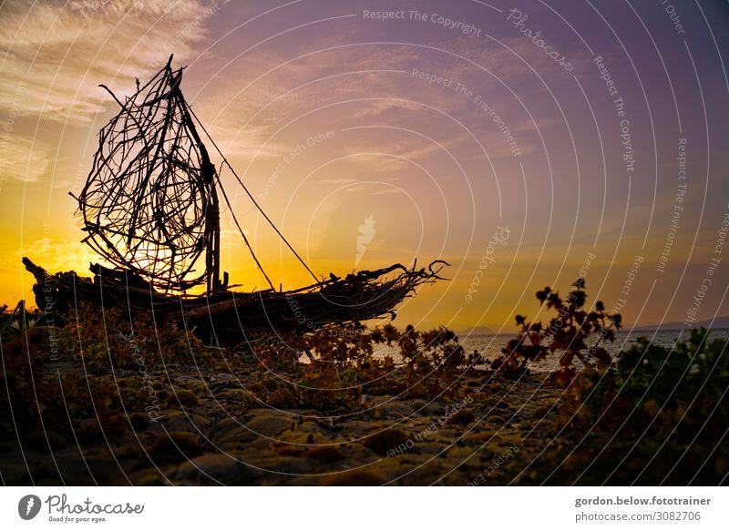 #Traumschiff Natur Sommer Pflanze blau Wasser weiß Landschaft Sonne dunkel schwarz gelb Umwelt Küste Bewegung Glück Gras