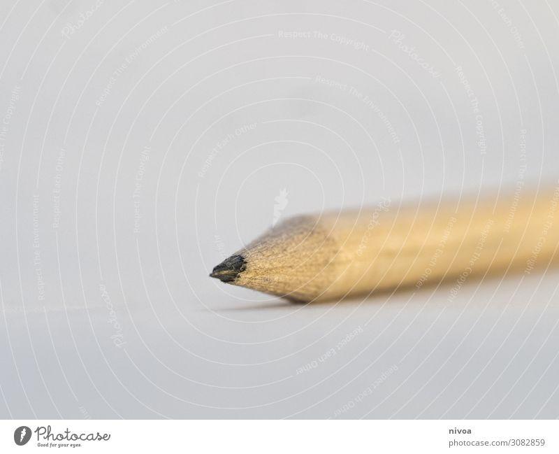 Detail eines Bleistifts Detailaufnahme Makroaufnahme Nahaufnahme weiß Graphit zeichnen schreiben Anspitzer Kreativität Holz Hintergrund neutral Design Farbfoto