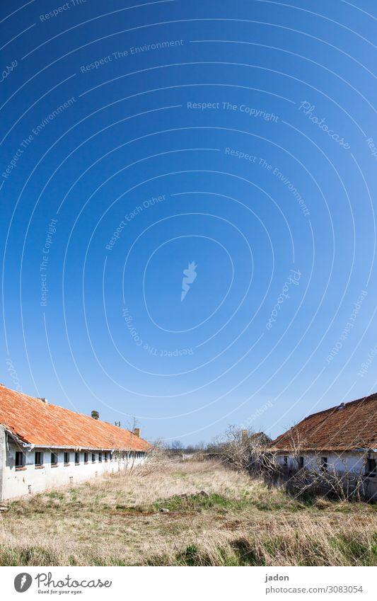 bauernhofurlaub. Stall Landwirtschaft Forstwirtschaft Feierabend Umwelt Wolkenloser Himmel Schönes Wetter Gras Sträucher Feld Dorf Menschenleer Hütte Ruine