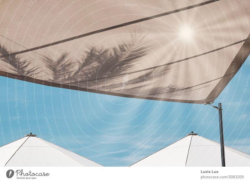 Sonnenschirm, unter Palmen Sommer Schönes Wetter Wärme Menschenleer Stadt Szene-Kneipe Urlaubsstimmung hell blau Himmel beige weiß Gedeckte Farben Außenaufnahme
