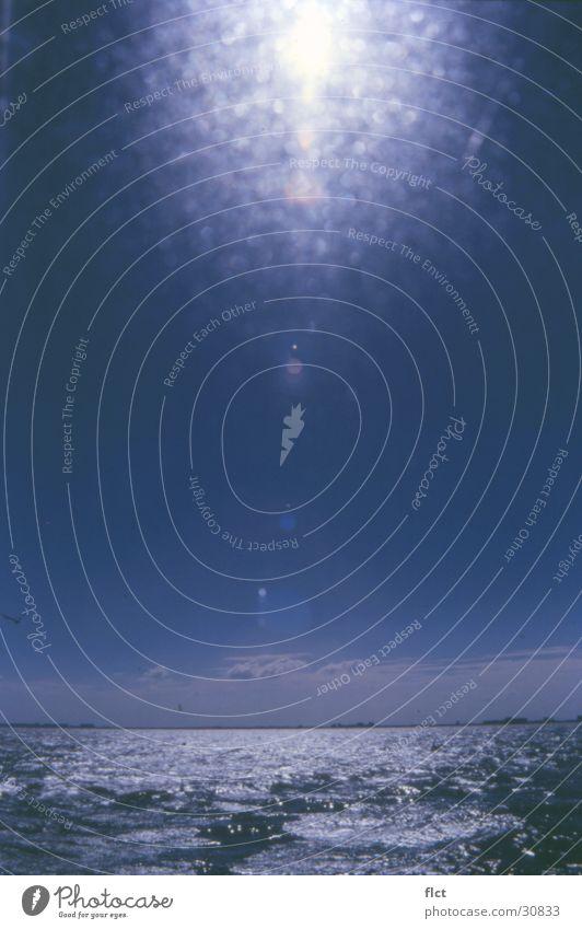 Die Nordsee II Meer Gegenlicht Wasser Sonne blau Himmel