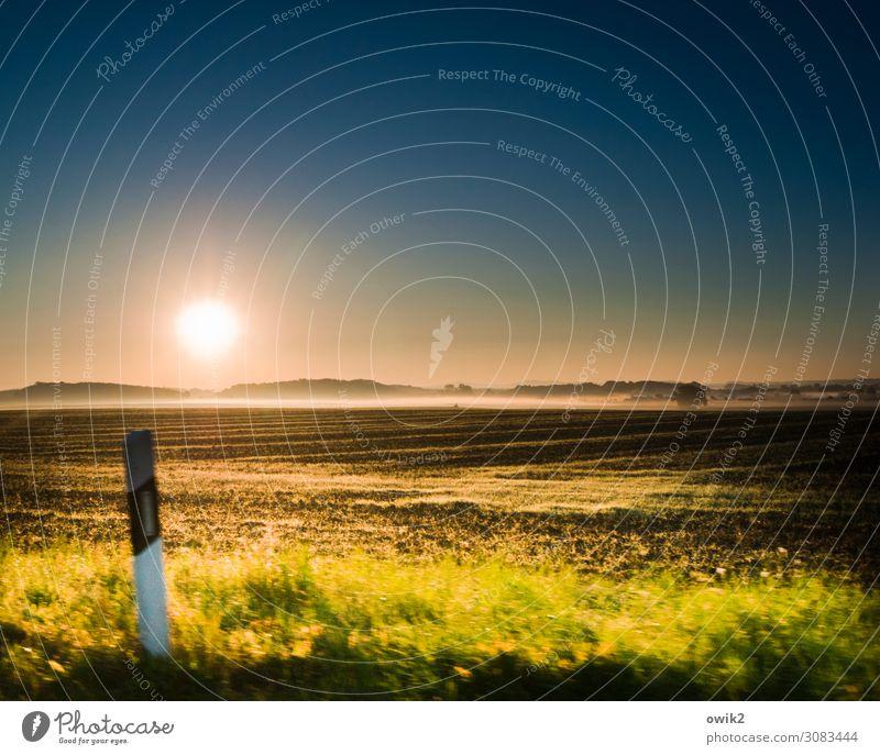 Nicht so schnell Umwelt Natur Landschaft Wolkenloser Himmel Horizont Sonne Herbst Schönes Wetter Baum Gras Sträucher Feld Wald Verkehr Straßenrand fahren Idylle