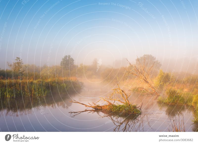 Herbstlicher nebliger ländlicher Sonnenaufgang. Sonniger Morgen am Fluss Ferien & Urlaub & Reisen Tourismus Ausflug Abenteuer Sommer Umwelt Natur Landschaft