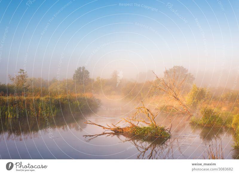 Himmel Ferien & Urlaub & Reisen Natur Sommer Pflanze Farbe grün Landschaft rot Baum Wolken Herbst Umwelt natürlich Wiese Küste