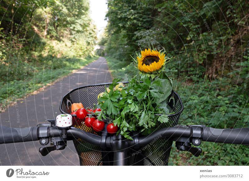 moderner Transport - rote Tomaten, grüne Petersilie und gelbe Sonnenblume liegen in einem Fahrradkorb Gemüse Kräuter & Gewürze Fahrradlenker Bioprodukte