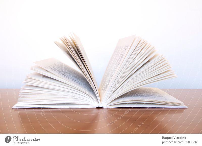 Ein offenes Buch lernen Bibliothek lesen Kommunizieren braun weiß Farbfoto Innenaufnahme Textfreiraum oben Kunstlicht Starke Tiefenschärfe