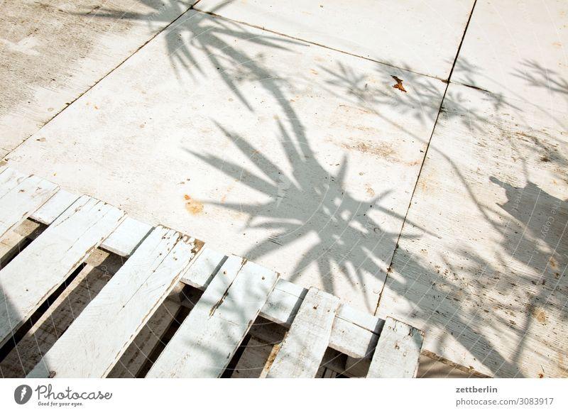 Schatten von Palmen Licht Ferien & Urlaub & Reisen exotisch Bühne Paletten stage Strukturen & Formen Plattform aschersleben Detailaufnahme historisch Kleinstadt