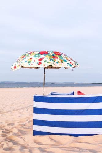 Strandschutz Ferien & Urlaub & Reisen Tourismus Ausflug Meer Ostsee Insel Usedom Neugier Erholung Sonnenschirm gestreift geblümt Windschutz Privatsphäre