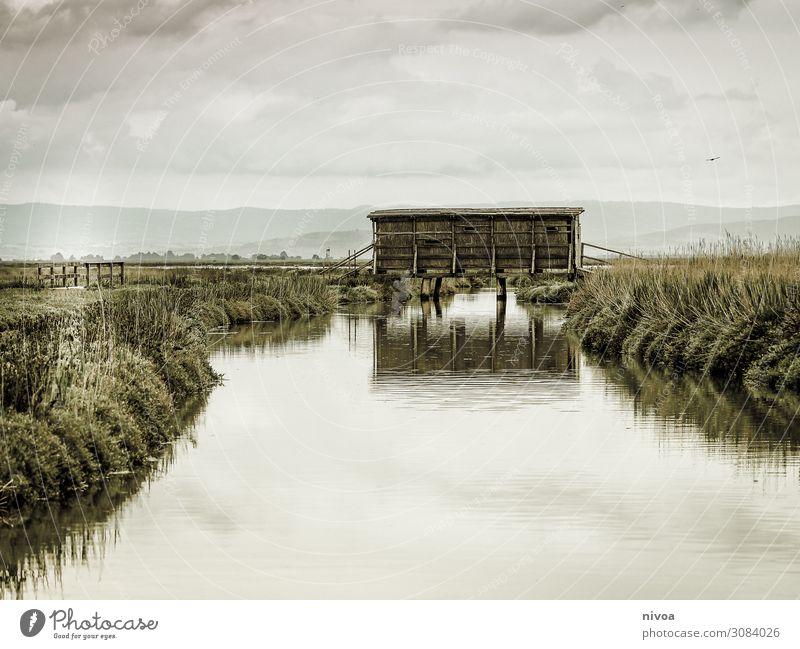 Fotohütte Toskana Natur Pflanze Landschaft Wolken Tier Ferne Umwelt Frühling Küste Kunst Freiheit Vogel Stimmung Ausflug Freizeit & Hobby Brücke