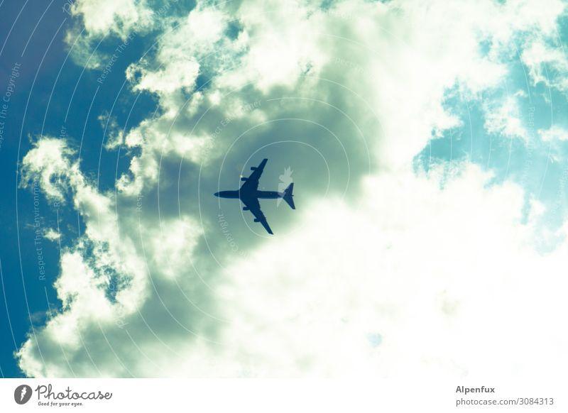 Flugcharme Klima Klimawandel Luftverkehr Flugzeug Passagierflugzeug fliegen Höhenangst Flugangst Angst Bewegung Endzeitstimmung Energie Ferien & Urlaub & Reisen