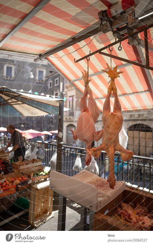 Kopfüber Marktstand Geflügel gerupft Italien Catania kopfvoran