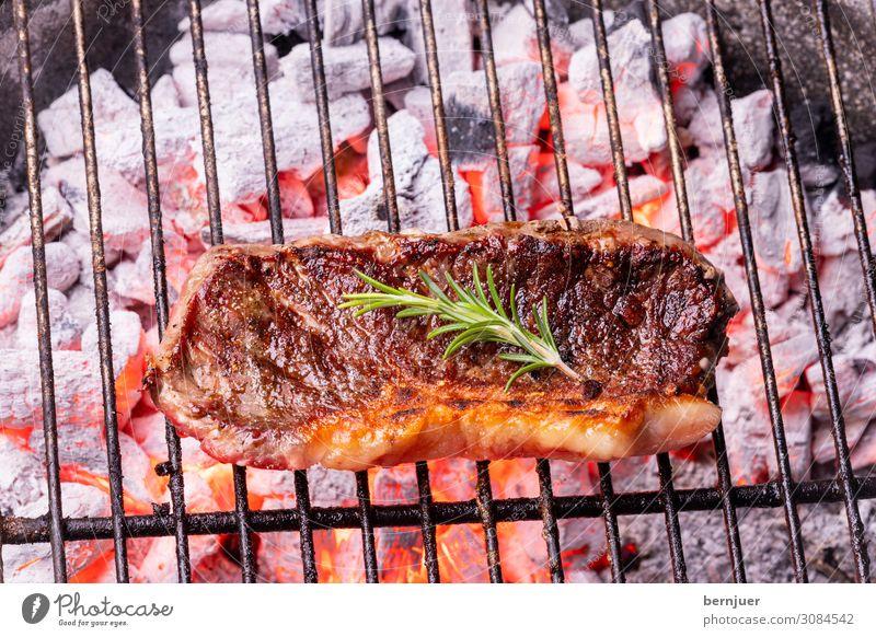 Steak vom Grill Fleisch Natur Wärme Holz Rost heiß rot schwarz authentisch Rindersteak Rindfleisch Rosmarin Holzkohle Feuerstelle Flamme grillen Grillrost Kohle