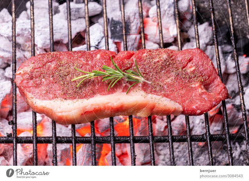 Steak auf dem Grill Fleisch Natur Wärme Holz Rost heiß rot schwarz Rindersteak Rindfleisch Rosmarin Holzkohle Feuerstelle Flamme grillen Grillrost Kohle Bbq