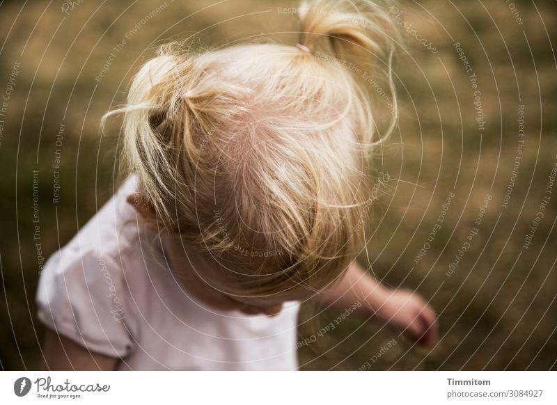 wertvoll | Mensch und Natur (2) Kleinkind Kopf Haare & Frisuren 1 Umwelt Gras Wiese Bewegung Fröhlichkeit Gesundheit natürlich Gefühle Freude Lebensfreude