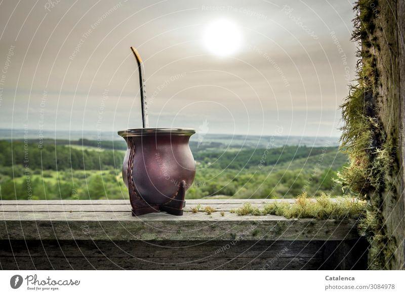 Tomas un matecito? Getränk Tee Mate Tee Natur Landschaft Pflanze Himmel Wolken Sonne Sommer Schönes Wetter Baum Gras Sträucher Flechten Moos Feld Wald Hügel