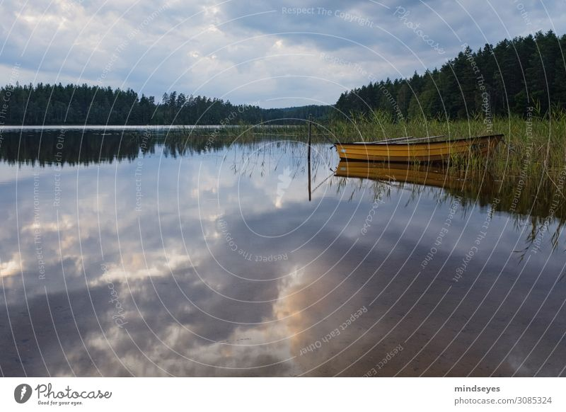Gelbes Boot am See Natur Landschaft Wasser Wolken Ruderboot atmen Erholung träumen nass Zufriedenheit achtsam ruhig Idylle Ferien & Urlaub & Reisen Umwelt