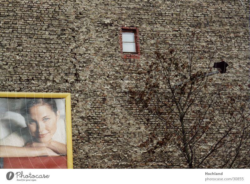 Zieglwand in Berlin Frau Baum Berlin Wand Fenster Architektur Werbung Backstein Backsteinwand