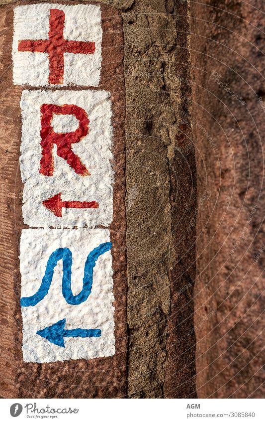 Der richtige Weg Lifestyle Ferien & Urlaub & Reisen Tourismus Ausflug Abenteuer Freiheit wandern Umwelt Natur Park Wege & Pfade Wegkreuzung Holz blau rot weiß