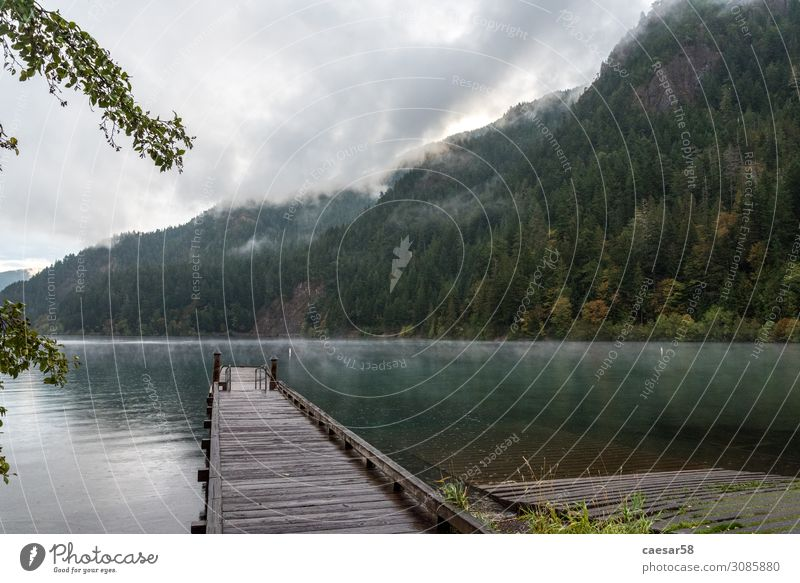 Olympischer Nationalpark 03 Natur Landschaft Wasser Nebel Baum Wald Seeufer Stimmung träumen Olympic-Nationalpark USA Promenade Spaziergang Hügel Brücke Holz