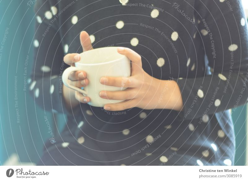 junge Frau im blauen Pullover hält einen weißen Porzellanbecher mit Tee oder Kaffee in den Händen Mensch feminin Junge Frau Jugendliche Hand Finger 1