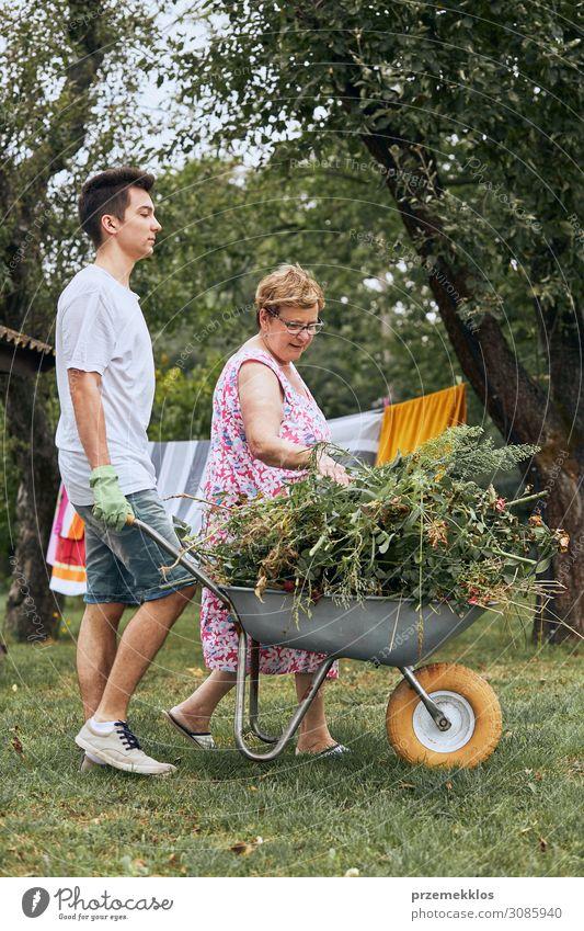Frau Mensch Jugendliche Mann alt Sommer Pflanze grün Junger Mann Blume 18-30 Jahre Lifestyle Erwachsene Senior Familie & Verwandtschaft Glück