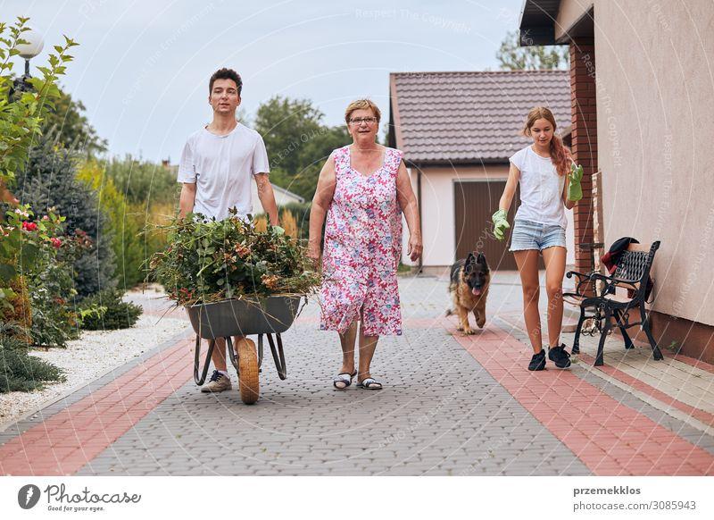 Enkelkinder helfen Großmutter in einem Hausgarten Lifestyle Glück Freizeit & Hobby Sommer Garten Kindererziehung Arbeit & Erwerbstätigkeit Gartenarbeit