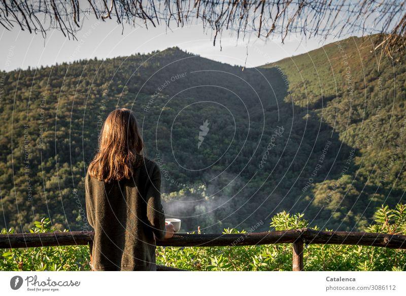 Kaffeegenuss Getränk Heißgetränk Becher feminin 1 Mensch Natur Landschaft Pflanze Himmel Sommer Baum Sträucher Wald Hügel Kaffeetasse beobachten stehen trinken