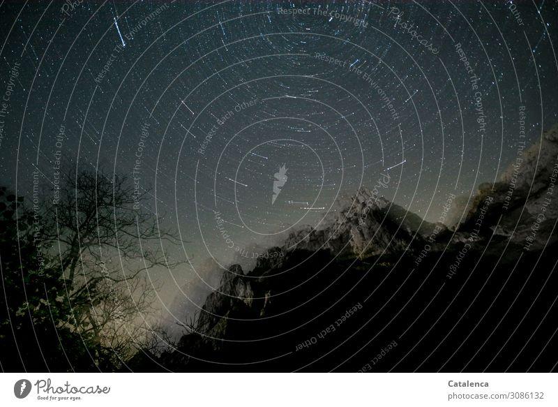 Unscharf | verwackelte Nachtaufnahme Berge u. Gebirge wandern Natur Landschaft Pflanze Himmel Wolkenloser Himmel Nachthimmel Stern Schönes Wetter Baum Felsen