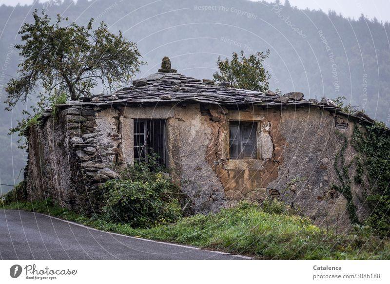 Alt |  ein Haus am Straßenrand Dach Ruine Gebäude Verlassen kaputt Vergänglichkeit Mauer Zerstörung Verfall Wand Fassade Fenster Vergangenheit Architektur