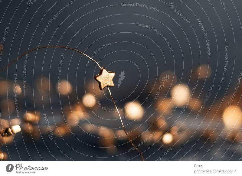 Sternenzauber Dekoration & Verzierung Weihnachten & Advent glänzend Kitsch Stern (Symbol) Weihnachtsdekoration Lichtpunkt scheinend gemütlich Lichtermeer