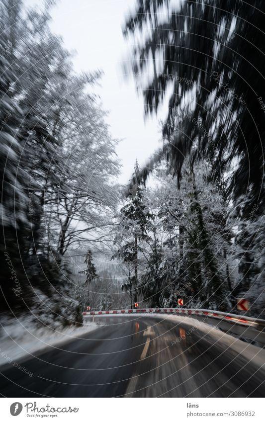 Kurvenlage l on the road again Ferien & Urlaub & Reisen Landschaft Baum Wald Winter Berge u. Gebirge Straße Umwelt Wege & Pfade Schnee Bewegung Verkehr Eis