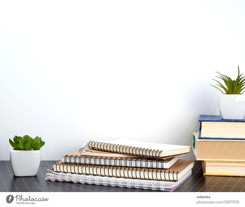 Stapel von Spiralheften mit weißen Seiten Topf Design Haus Dekoration & Verzierung Tisch Schule Arbeit & Erwerbstätigkeit Arbeitsplatz Büro Business Pflanze