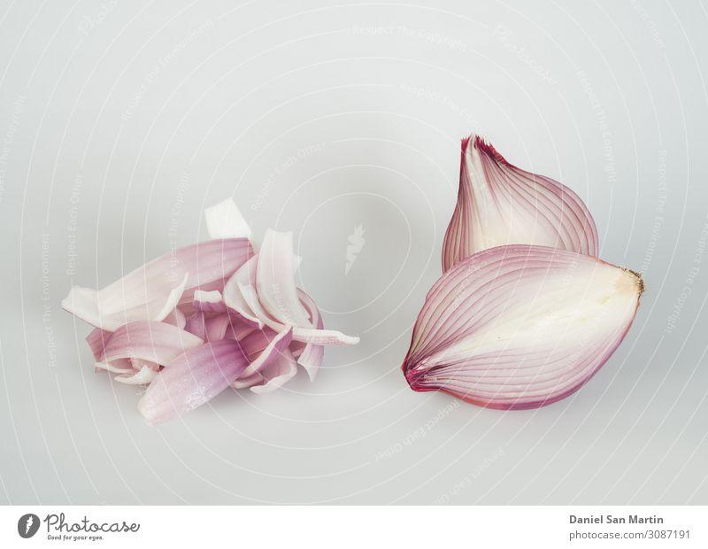 Rote Zwiebel isoliert auf weißem Hintergrund. Gemüse Frucht Kräuter & Gewürze Ernährung Vegetarische Ernährung Diät Pflanze Sammlung glänzend frisch gut