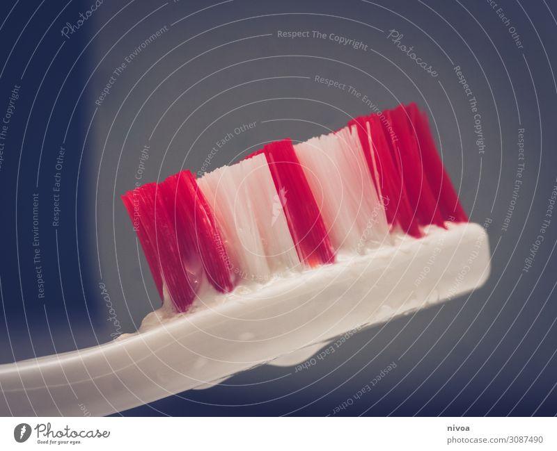 Zahnbürstenkopf Lebensmittel Ernährung Gesundheit Behandlung Wohnung Bad Kindererziehung lernen Wassertropfen Tube Zahncreme Reinigen Zahnpflege Borsten rennen