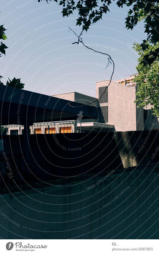 zweig Natur Stadt Baum Architektur Wand Umwelt Gebäude Mauer Schönes Wetter Wolkenloser Himmel Zweig eckig