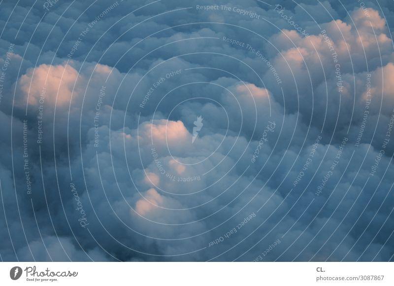 wolken Natur Himmel Wolken Klima Klimawandel Wetter Luftverkehr Flugzeugausblick Unendlichkeit Freiheit Leichtigkeit Ferien & Urlaub & Reisen Farbfoto