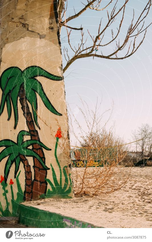 zwei palmen Ferien & Urlaub & Reisen Tourismus Ferne Freiheit Städtereise Sommer Sommerurlaub Sportstätten Umwelt Natur Sand Wolkenloser Himmel Wetter