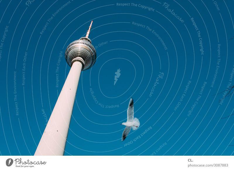 heimflug Ferien & Urlaub & Reisen Tourismus Ausflug Städtereise Wolkenloser Himmel Schönes Wetter Berlin Hauptstadt Stadtzentrum Menschenleer Turm