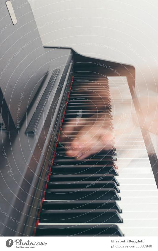 Klavier spielen Freizeit & Hobby Kunst Musik Bewegung natürlich positiv Gefühle Stimmung Euphorie Leidenschaft Hand Klaviatur Musikinstrument Farbfoto