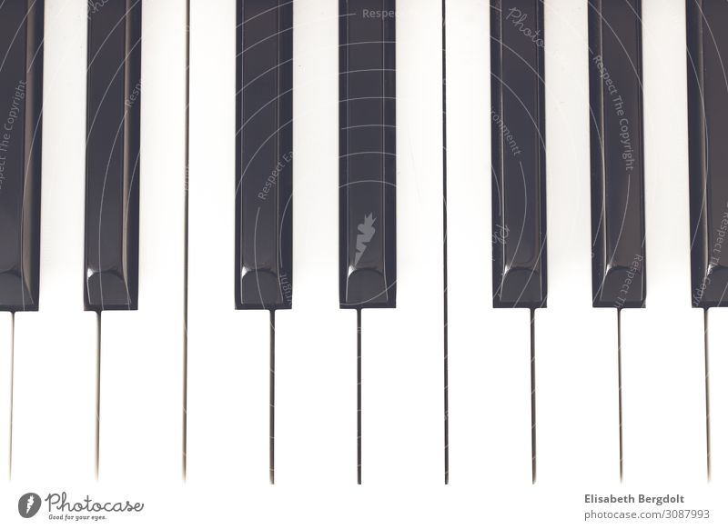 Klaviatur Freizeit & Hobby Kunst Musik Klavier Klavier spielen Farbfoto Gedeckte Farben Innenaufnahme Menschenleer Textfreiraum unten Tag Licht Totale