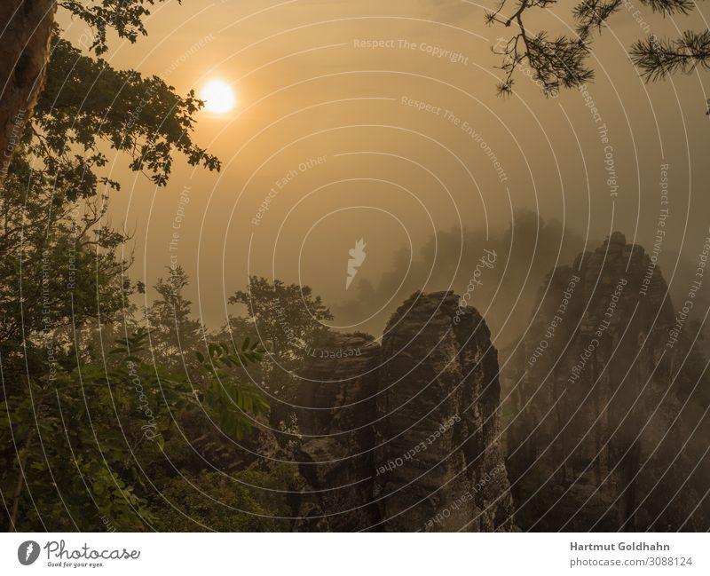 Malerischer Sonnenaufgang in der Sächsischen Schweiz. Ferien & Urlaub & Reisen Tourismus Sightseeing Berge u. Gebirge wandern Natur Landschaft Sonnenlicht Nebel