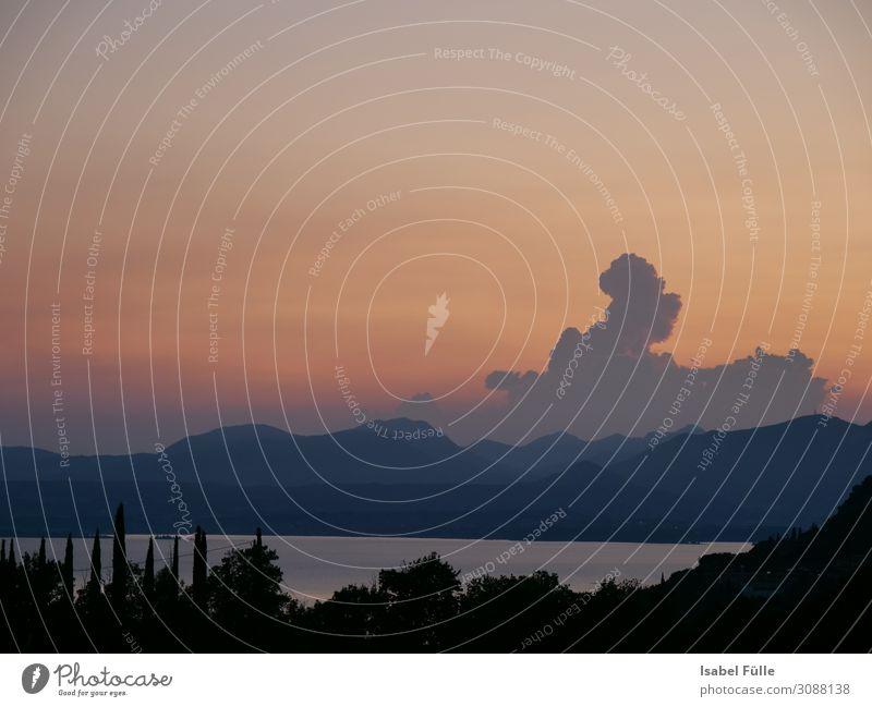 Sonnenuntergang in Bardolino / Gardasee Landschaft Himmel Sonnenaufgang Schönes Wetter Baum Hügel Berge u. Gebirge Dolomiten Küste See Erholung Abend