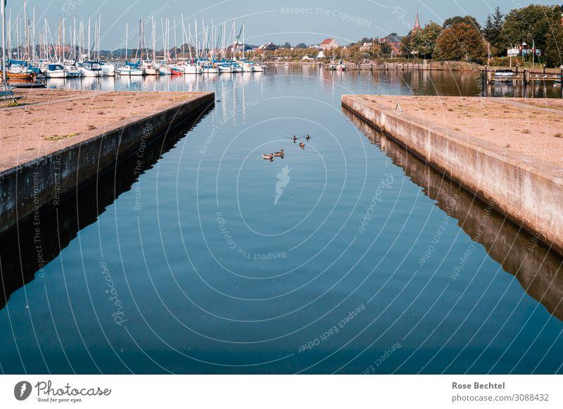 Blick auf den Hafen Ferien & Urlaub & Reisen Sommer blau Wasser Erholung Küste Tourismus Ausflug Wildtier Tiergruppe nass Schifffahrt maritim Segeln Ente