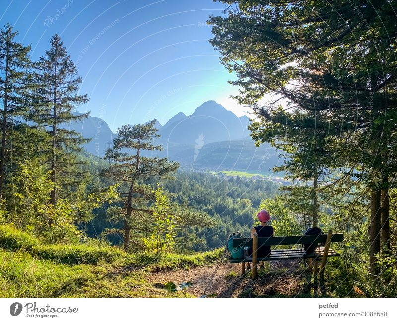 Pause II Berge u. Gebirge wandern 1 Mensch Landschaft Himmel Sommer Baum Wald Alpen Gipfel Denken Erholung genießen Blick sitzen blau grün Zufriedenheit ruhig