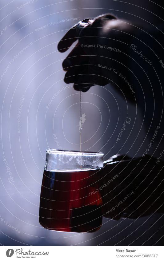 Bereit, am Morgen mit einer Tasse Tee frisch zu werden. Tee kochen Becher Glas Wellness Wohlgefühl Erholung Mann Erwachsene Hand Finger 1 Mensch 18-30 Jahre