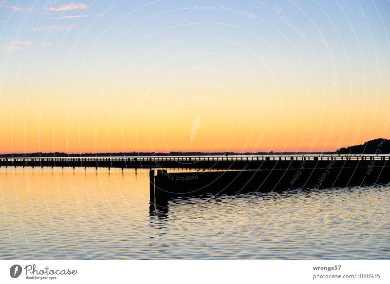 Sonnenuntergang am Ribnitzer See Himmel Sommer blau Wasser schwarz gelb Stimmung gold Luft Schönes Wetter Hafen Seeufer Ostsee Bucht Steg maritim