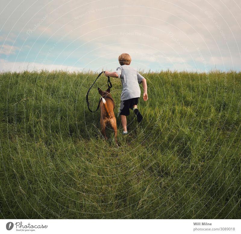 Junge und sein Hund rennen einen Hügel hinauf Kind Jugendliche Junger Mann Jugendkultur Tier Haustier Gras Läufer Freude Wolken Tag Fröhlichkeit Kindheit