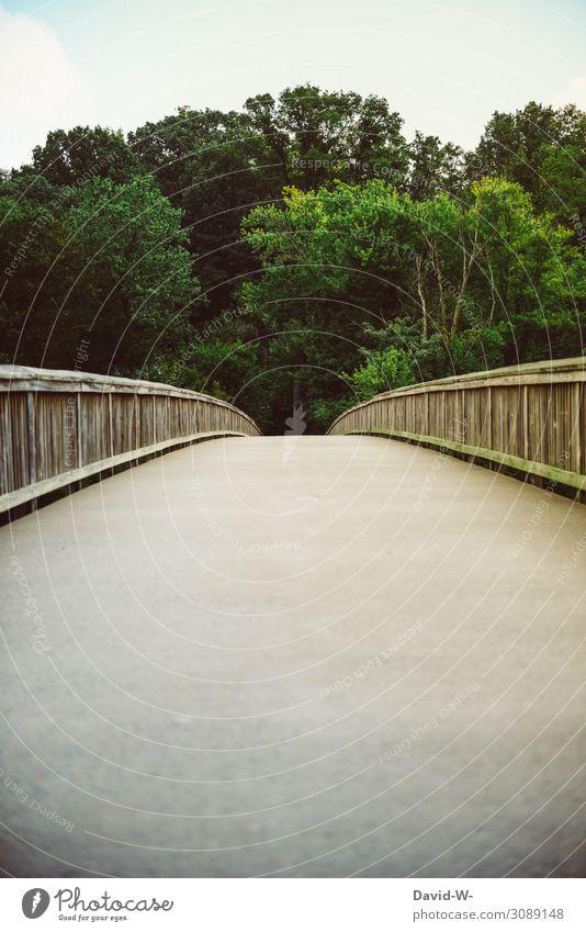 die andere Seite Lifestyle Kunst Umwelt Natur Landschaft Klima Klimawandel Wetter Schönes Wetter Pflanze Baum Park Wald beobachten Brücke Brückengeländer