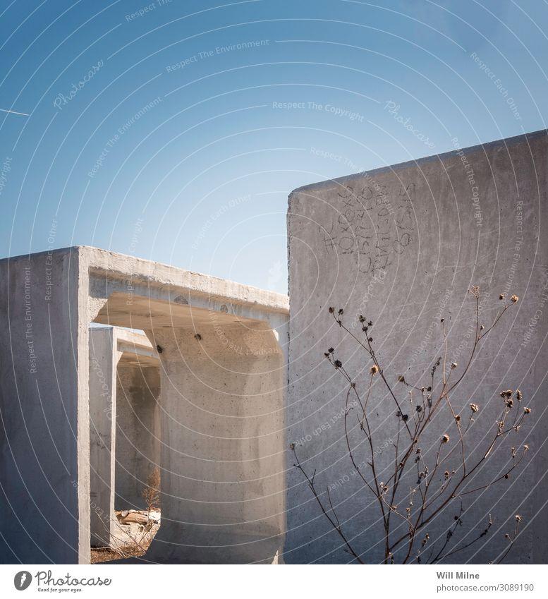 Pflanzenzucht in der Mitte des Baus Konstruktion Schatten Strukturen & Formen Gebäude Arbeit & Erwerbstätigkeit